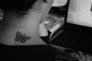 The butterfly....